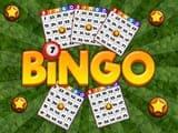 Play Bingo Revealer