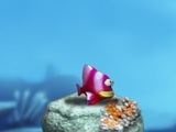 Play Friendly Fish