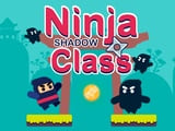 Play Ninja Shadow Class