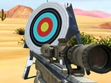 Play Hit Targets Shooting