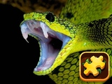 Play Snake Puzzle Challenge