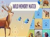 Play Wild Memory