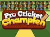 Play Pro Cricket Champion